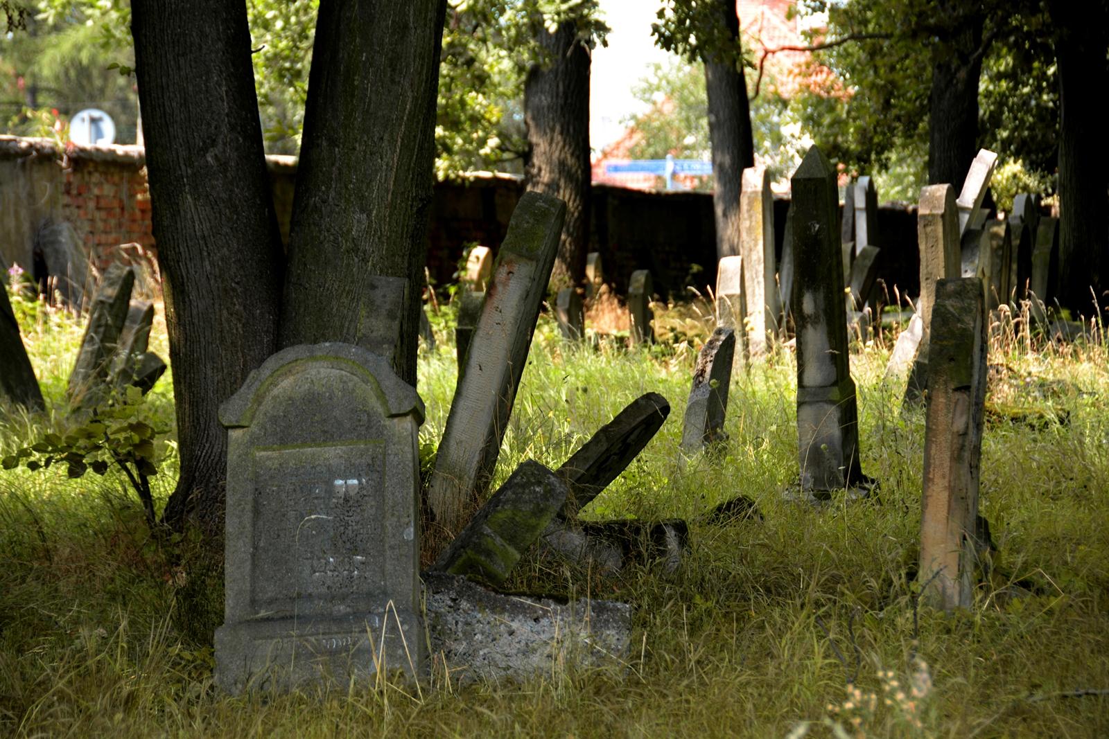 cmentarz-wyznania-mojzeszowego-1.jpg