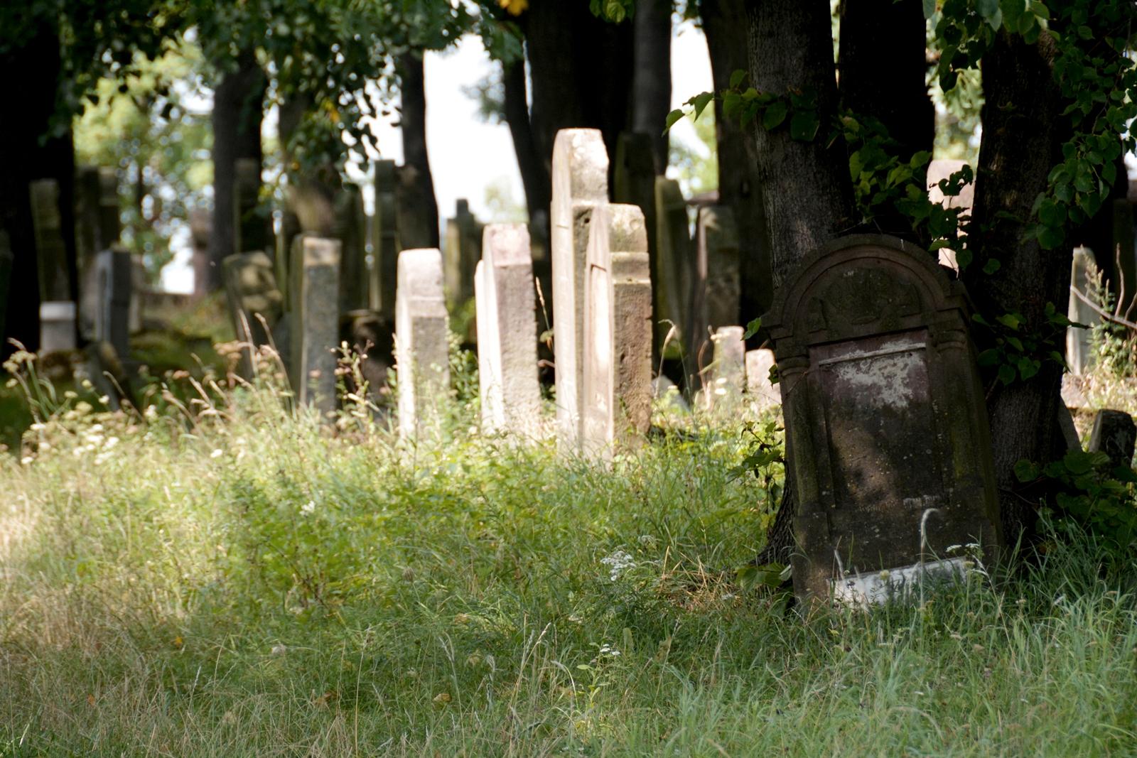 cmentarz-wyznania-mojzeszowego-2.jpg