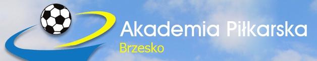 APBrzesko