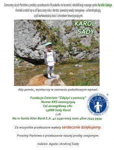 karol-sady